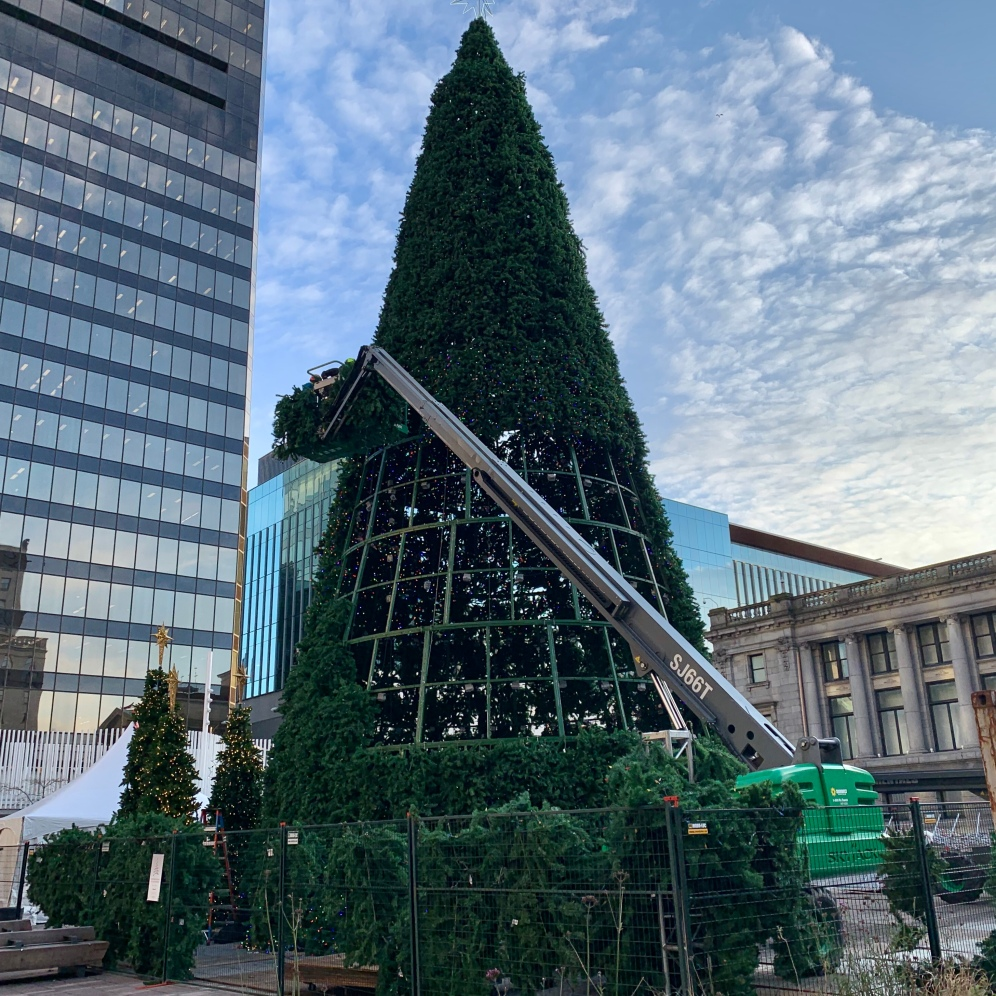 Vancouver's Christmas Tree, Vancouver Art Gallery Plaza