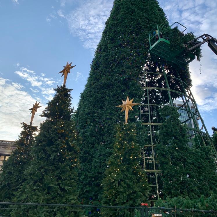 Vancouver's Christmas Tree, Vancouver Art Gallery Plaza