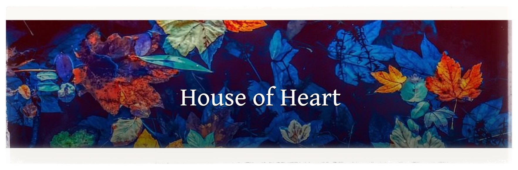 Holly, House of Heart – Forest Song